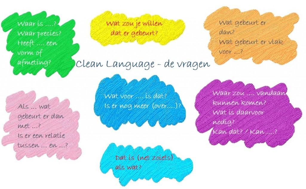 clean-language-de-vragen
